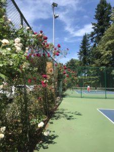 tennis in Washington Park, Portland OR