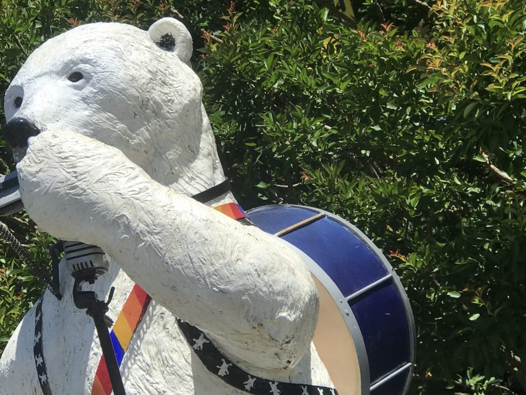 Grants Pass Bear