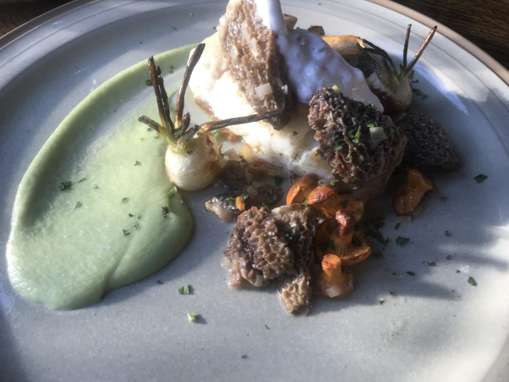 Halibut with morel mushrooms at Chico's Restaurant, MT