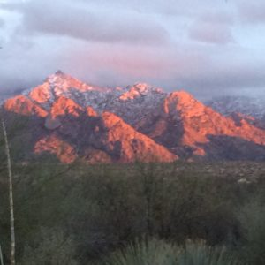 View from my living room at Fossland's Paradise, Catalina, AZ