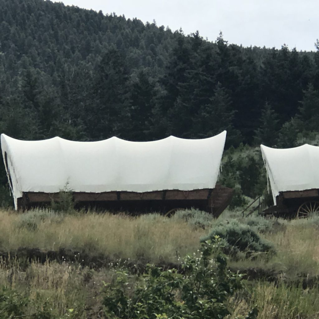 Glamping Covered Wagons at Chico Hot Springs, MT