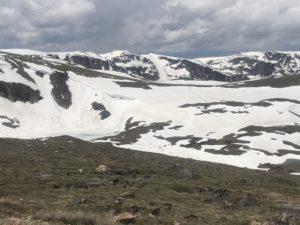 June on Beartooth Pass MT